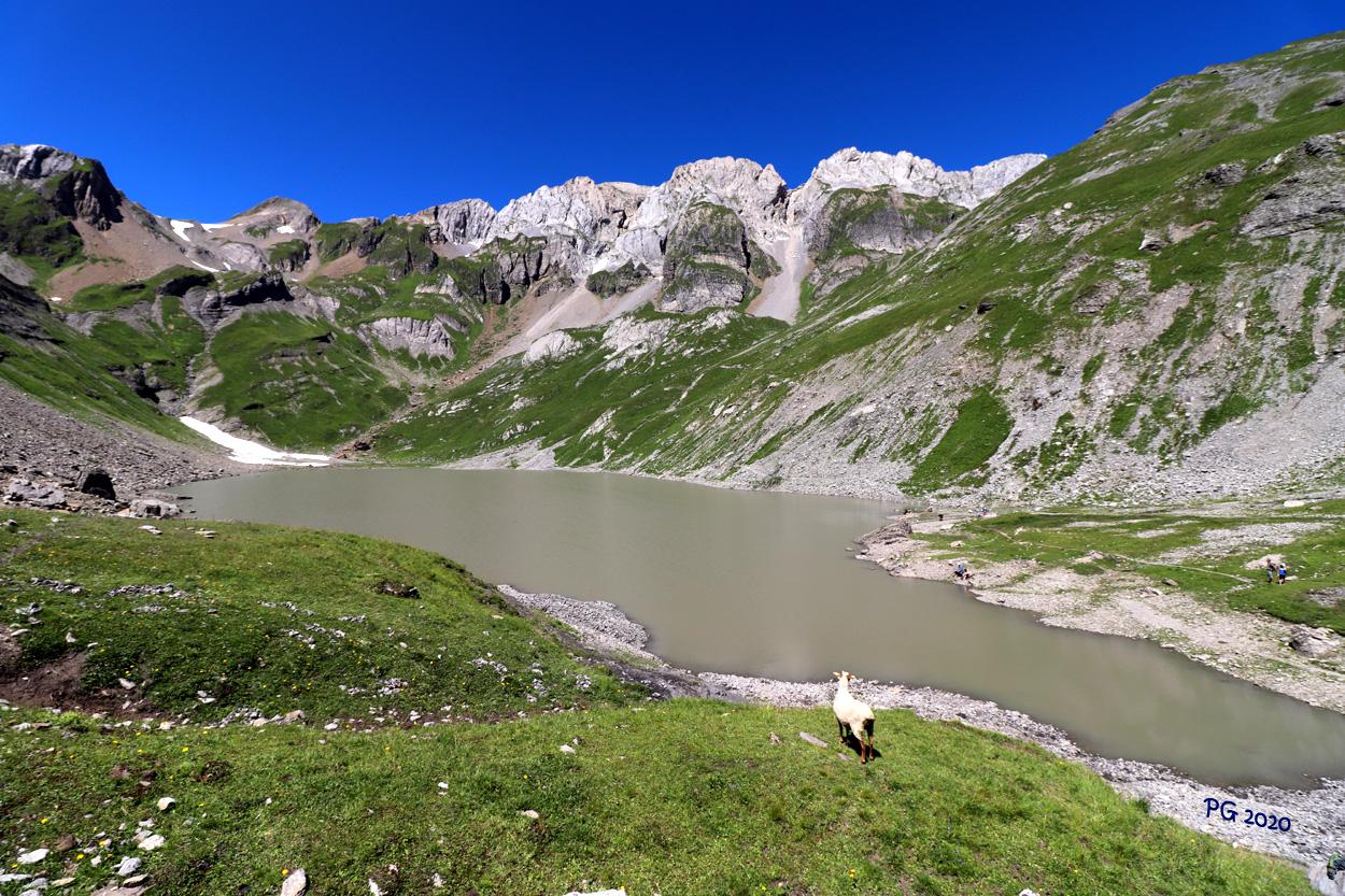 Lac de la Vogealle1